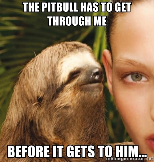 The Rape Sloth - The Pitbull has to get through me Before it gets to Him...
