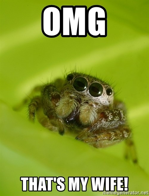 The Spider Bro - OMG tHat's my wife!