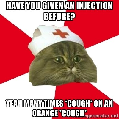 Nursing Student Cat - Have you given an injection before? Yeah many times *cough* on an orange *cough*