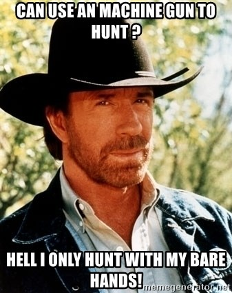 Brutal Chuck Norris - can use an machine gun to hunt ? hell i only hunt with my bare hands!