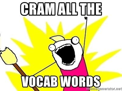 X ALL THE THINGS - cram all the vocab words