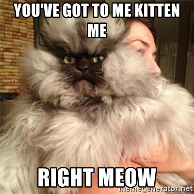 Colonel Meow - you've got to me kitten me Right Meow
