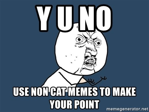 Y U No - Y U NO USE NON CAT MEMES TO MAKE YOUR POINT