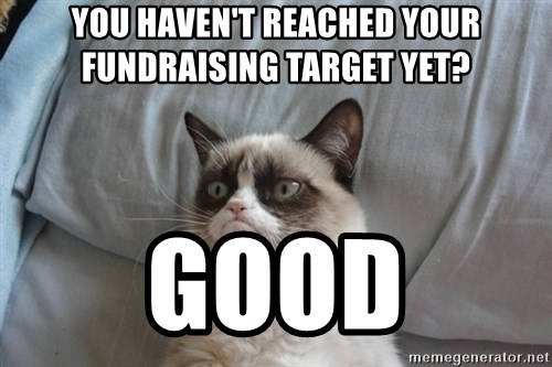 Grumpy cat good - You Haven't reached your      FUNDRAISING target yet? GOOD
