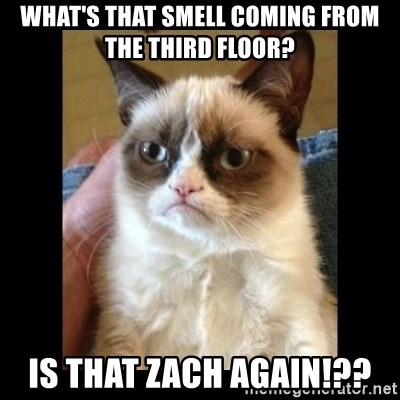 Frowning Cat - WHat's that smell coming from the third floor? IS that zach again!??