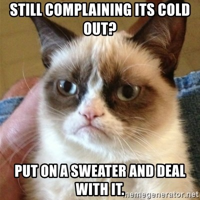 Grumpy Cat  - Still complaining its cold out? Put on a sweater and Deal with it.