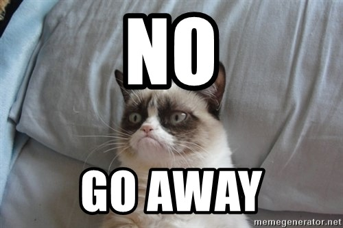 Grumpy cat 5 - no go away