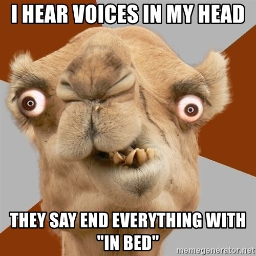 """Crazy Camel lol - I hear voices in my head They say end everything with """"in bed"""""""