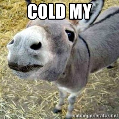 Assumptions Donkey - Cold My