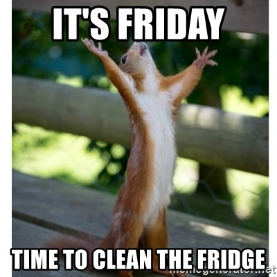 Thanking Squirrel - it's friday time to clean the fridge