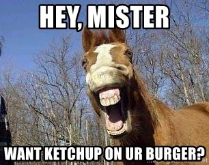 Horse - hey, mister want ketchup on ur burger?