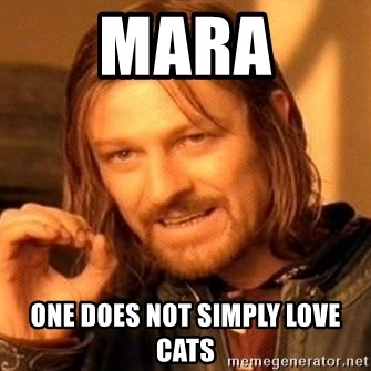 One Does Not Simply - mara one does not simply love cats