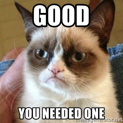 Grumpy Cat  - Good you needed one