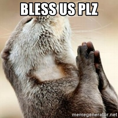 Praying Otter - bless us plz