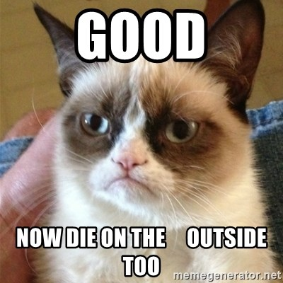 Grumpy Cat  - Good Now die on the     outside too