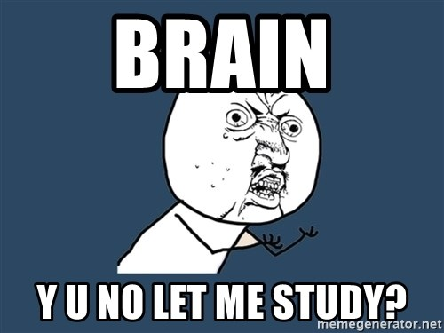 Y U No - Brain Y u no let me Study?