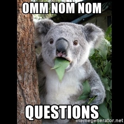 Koala can't believe it - omm nom nom Questions
