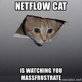 Ceiling cat - Netflow Cat is watching you massfrustrate