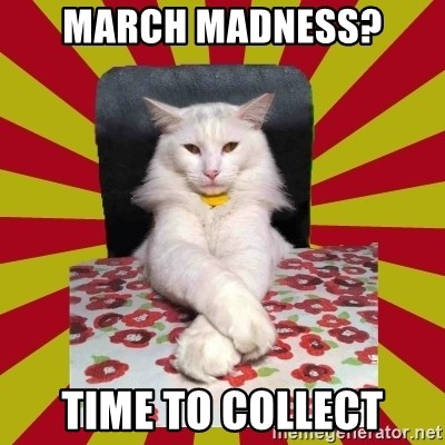 Dictator Cat - March madness? time to collect