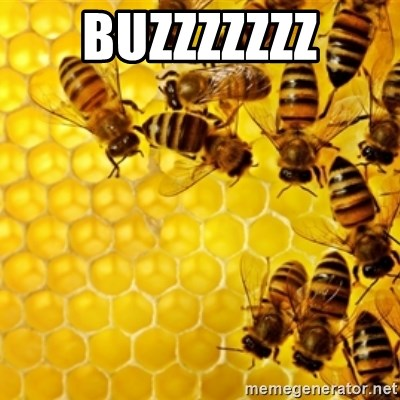 Honeybees - BUZZZZZZZ