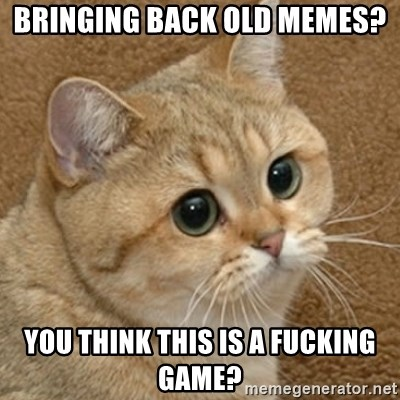 motherfucking game cat - Bringing back old memes? you think this is a fucking game?