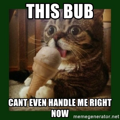 lil bub - This Bub Cant even handle me right now