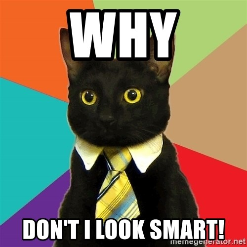 Business Cat - WHY DON'T I LOOK SMART!