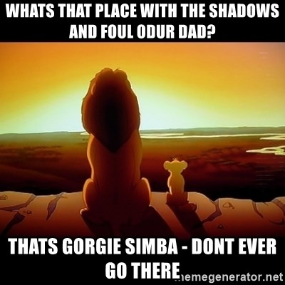 Simba - Whats that place with the shadows and foul odur Dad? Thats Gorgie Simba - Dont ever go there