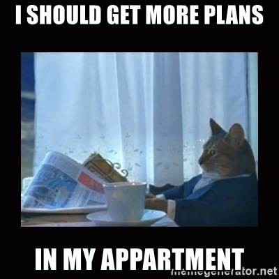 i should buy a boat cat - I should get more plans In my appartment