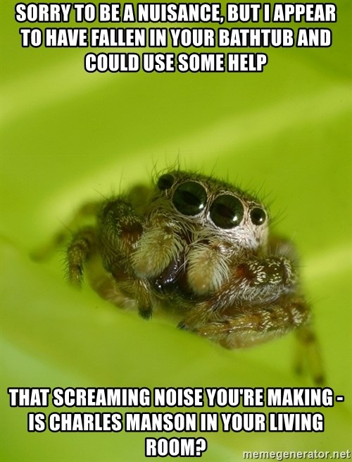 The Spider Bro - Sorry to be a nuisance, but i appear to have fallen in your bathtub and could use some help That Screaming noise you're making - Is Charles Manson in your living room?