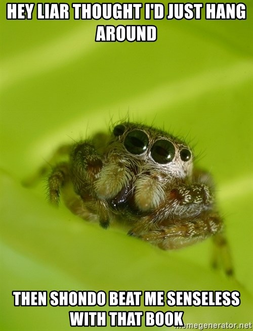 The Spider Bro - hey liar thought i'd just hang around then Shondo beat me senseless with that book