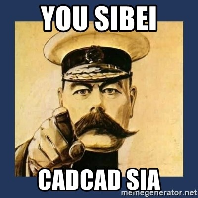 your country needs you - YOU SIBEI CADCAD SIA