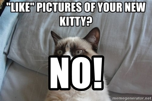 "Grumpy cat 5 - ""Like"" pictures of your new kitty? NO!"