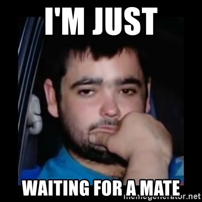 just waiting for a mate - I'm jUst Waiting for a mate