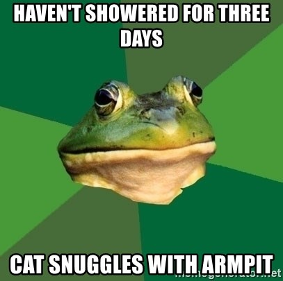 Foul Bachelor Frog - Haven't showered for three days cat snuggles with armpit