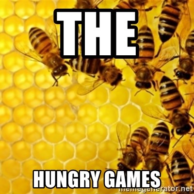 Honeybees - THE HUNGRY GAMES