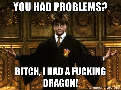 Harry Potter Come At Me Bro - You had problems? bitch, i had a fucking dragon!