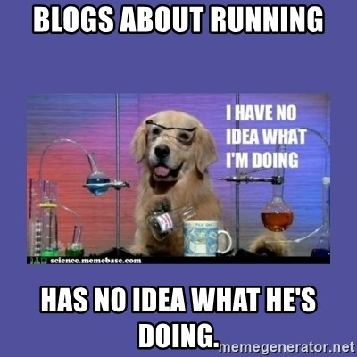 I don't know what i'm doing! dog - BLOGS ABOUT RUNNING HAS NO IDEA WHAT HE'S DOING.