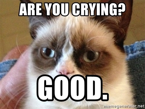 Angry Cat Meme - Are you Crying? Good.