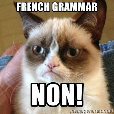 Grumpy Cat  - French grammar non!
