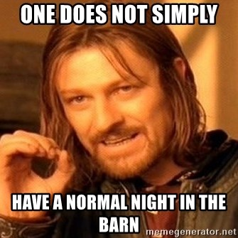 One Does Not Simply - one does not simply  have a normal night in the barn