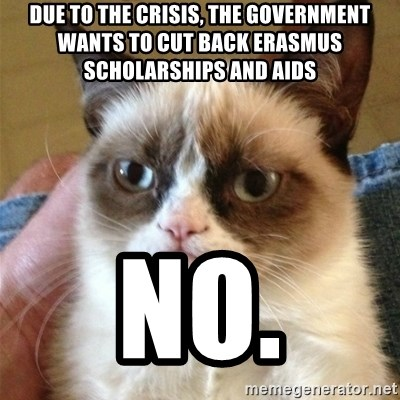 Grumpy Cat  - Due to the crisis, the government wants to cut back Erasmus scholarships and aids NO.