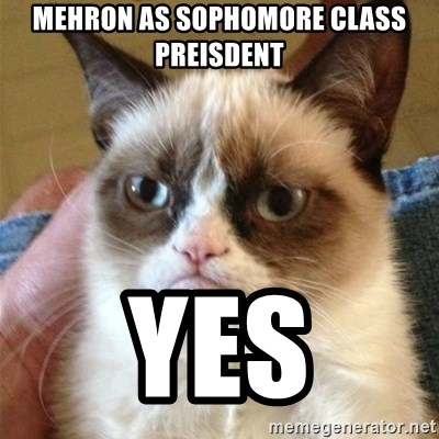 Grumpy Cat  - Mehron As sophomore class preisdent  YES