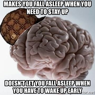 Scumbag Brain - Makes you fall asleep when you need to stay up Doesn't let you fall asleep when you have to wake up early