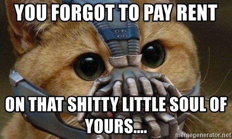 bane cat - You forgot to pay rent on that shitty little soul of yours....