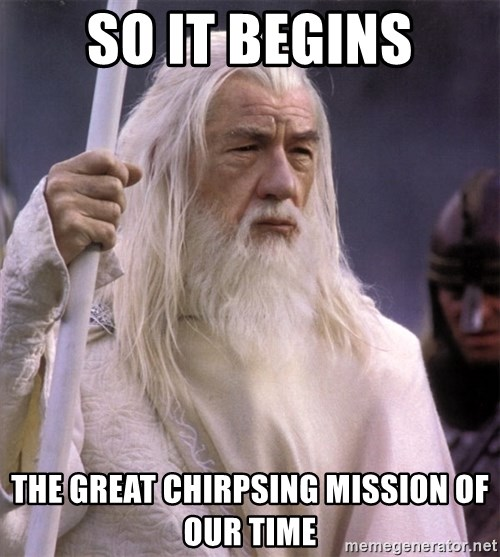 White Gandalf - so it begins the great chirpsing mission of our time