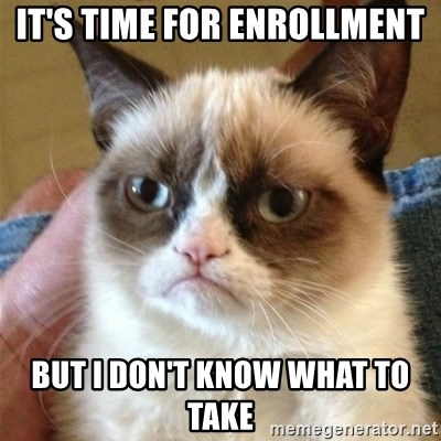 Grumpy Cat  - It's time for enrollment but i don't know what to take