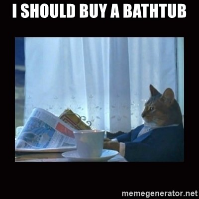 i should buy a boat cat - i should buy a bathtub