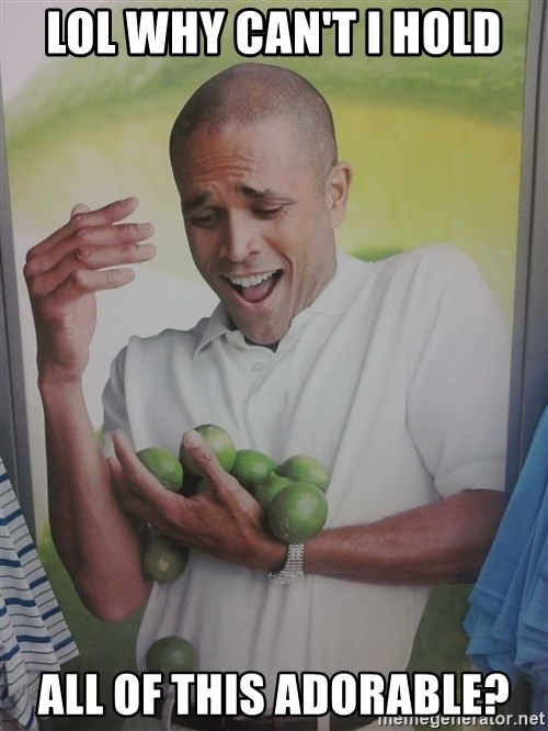 Limes Guy - Lol why can't I hold All of this adorable?