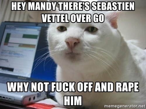 Serious Cat - hey mandy there's sebastien vettel over go why not fuck off and rape him